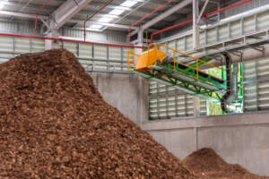 Biomass - 10 Sustainable Sources of Energy